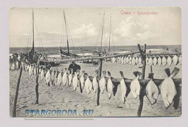 Зеленоградск на почтовых открытках. Берег Балтийского моря.